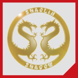 Shaolin Shadow